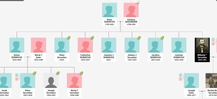Servatius Geier lineage chart_